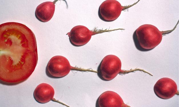 Alimentação e nutrição para fertilidade masculina