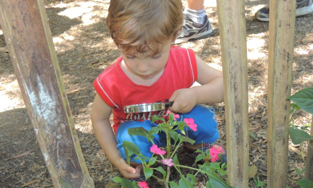 O que a falta do brincar na natureza somado ao stress da vida urbana pode causar em nossas crianças?