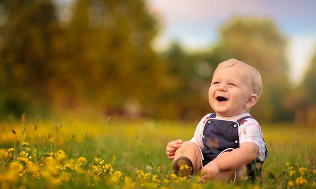 A Vida –Parentalidade eamor naPrimeira Infância